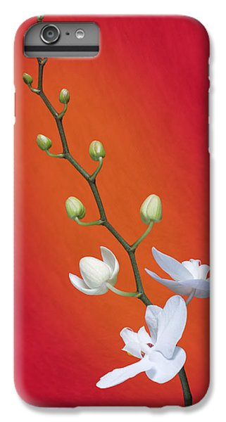 Orchid iPhone 6 Plus Case - White Orchid Buds On Red by Tom Mc Nemar