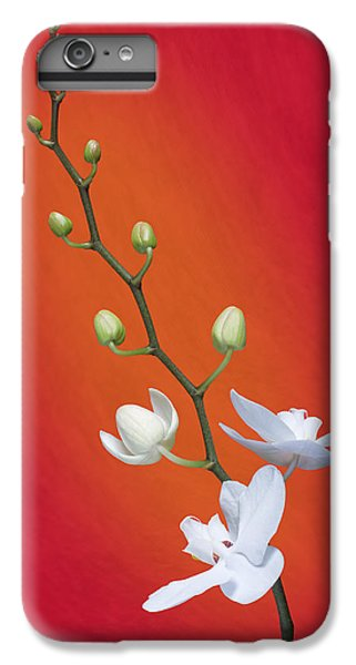 White Orchid Buds On Red IPhone 6 Plus Case by Tom Mc Nemar