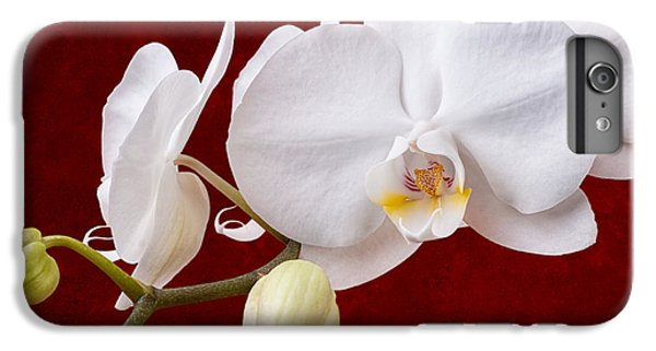 Orchid iPhone 6 Plus Case - White Orchid Closeup by Tom Mc Nemar