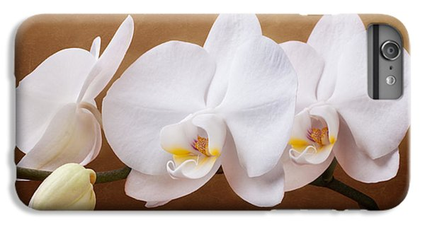 White Orchid Flowers And Bud IPhone 6 Plus Case