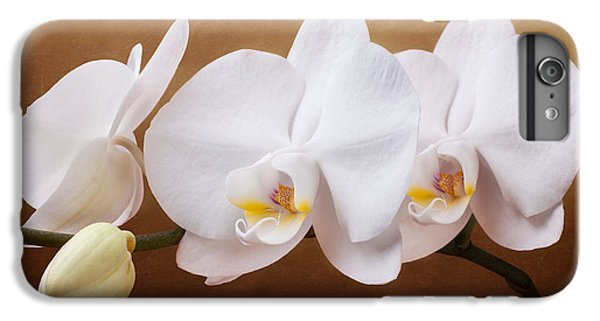 White Orchid Flowers And Bud IPhone 6 Plus Case by Tom Mc Nemar