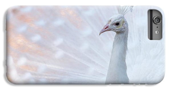 IPhone 6 Plus Case featuring the photograph White Peacock by Sebastian Musial