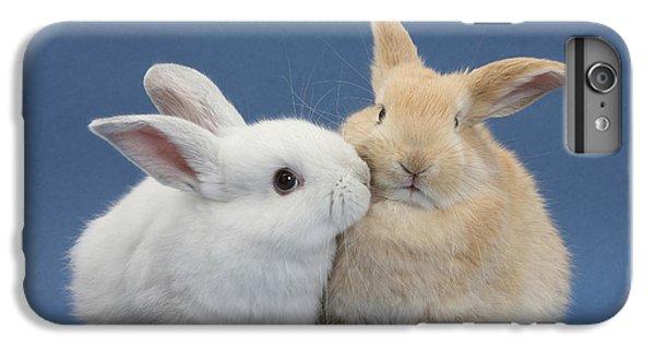 White Rabbit And Sandy Rabbit IPhone 6 Plus Case