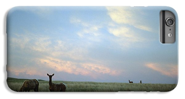 White-tailed Deer On The Prairie IPhone 6 Plus Case