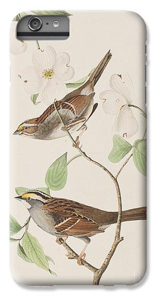 White Throated Sparrow IPhone 6 Plus Case by John James Audubon