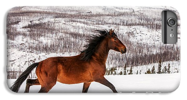 Horse iPhone 6 Plus Case - Wild Horse by Todd Klassy
