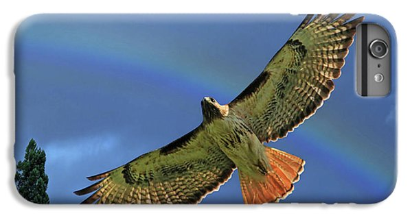 Wings 2 IPhone 6 Plus Case by Donna Kennedy