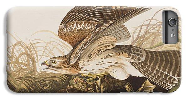Winter Hawk IPhone 6 Plus Case by John James Audubon