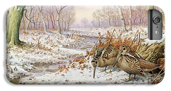 Woodcock IPhone 6 Plus Case by Carl Donner