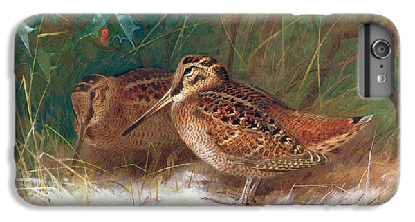 Woodcock In The Undergrowth IPhone 6 Plus Case by Archibald Thorburn