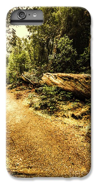 Nature Trail iPhone 6 Plus Case - Woodland Nature Walk by Jorgo Photography - Wall Art Gallery