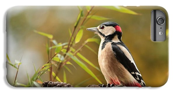 Woodpecker 3 IPhone 6 Plus Case by Heike Hultsch