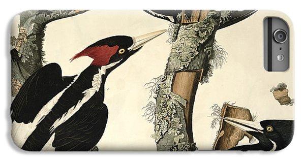 Woodpecker iPhone 6 Plus Case - Woodpecker by John James Audubon