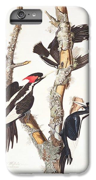 Woodpecker iPhone 6 Plus Case - Woodpeckers by John James Audubon