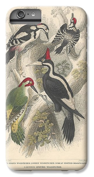 Woodpeckers IPhone 6 Plus Case by Dreyer Wildlife Print Collections