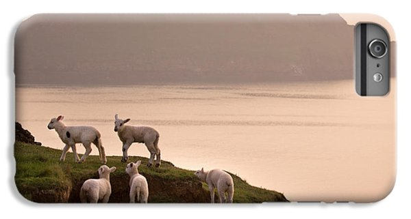 Sheep iPhone 6 Plus Case - Worms Head by Angel Ciesniarska