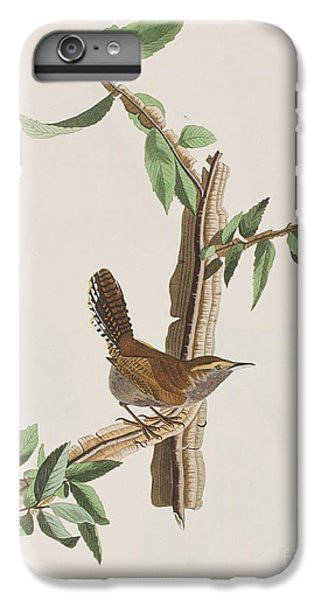 Wren IPhone 6 Plus Case by John James Audubon
