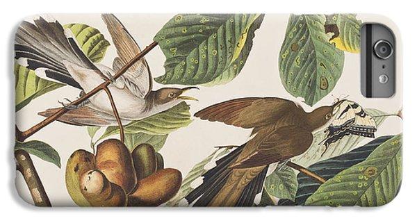 Yellow Billed Cuckoo IPhone 6 Plus Case by John James Audubon