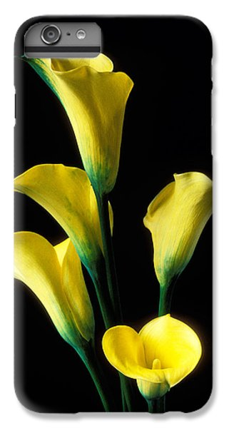 Lily iPhone 6 Plus Case - Yellow Calla Lilies  by Garry Gay