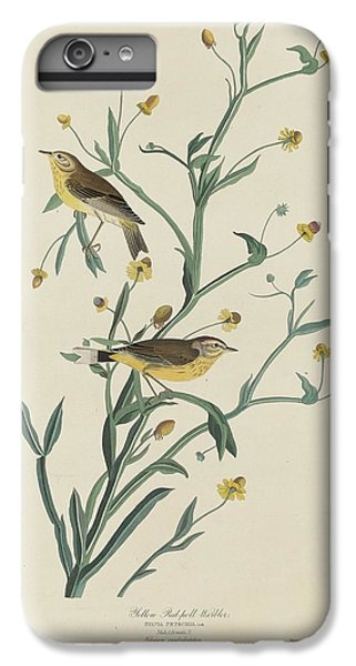 Yellow Red-poll Warbler IPhone 6 Plus Case