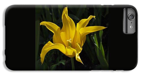 Yellow Star Tulip IPhone 6 Plus Case