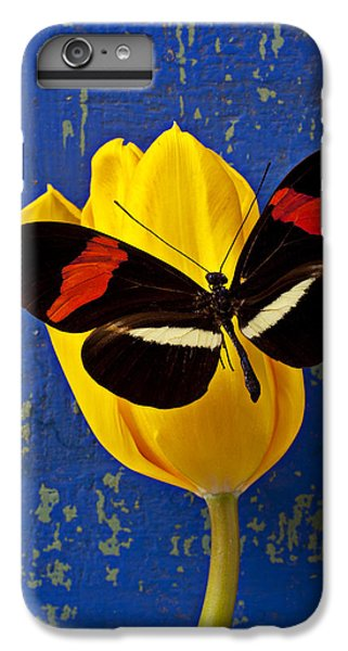 Yellow Tulip With Orange And Black Butterfly IPhone 6 Plus Case by Garry Gay