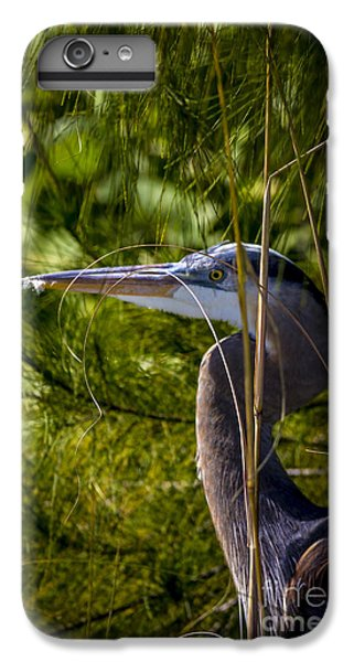Egret iPhone 6 Plus Case - You Can't See Me by Marvin Spates