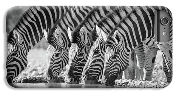 Zebras Drinking IPhone 6 Plus Case by Inge Johnsson