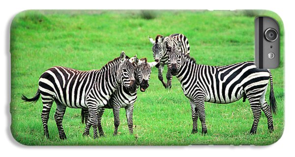 Zebras IPhone 6 Plus Case