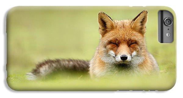 Zen Fox Series - Zen Fox In A Sea Of Green IPhone 6 Plus Case by Roeselien Raimond