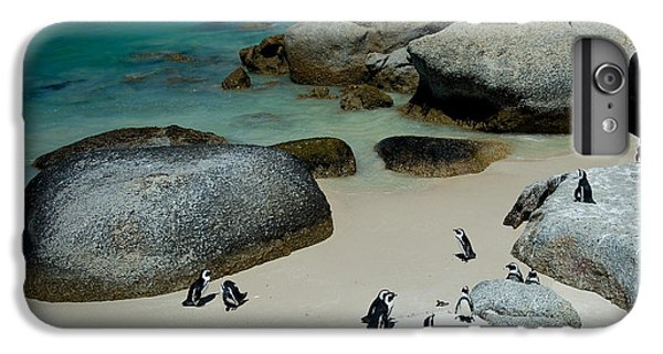 Africa iPhone 6 Plus Case - African Pinguins At Bolders Beach In by Rudy Mareel