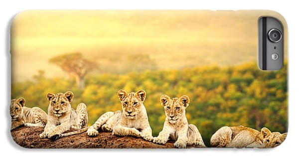 Lion iPhone 6 Plus Case - Close Up Of Lion Cubs Laying Together by Karelnoppe