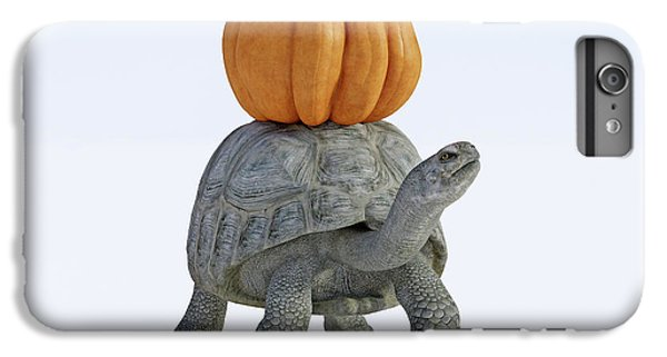 Tortoise iPhone 6 Plus Case - Friends The Tortoise And The Pumpkin by Betsy Knapp