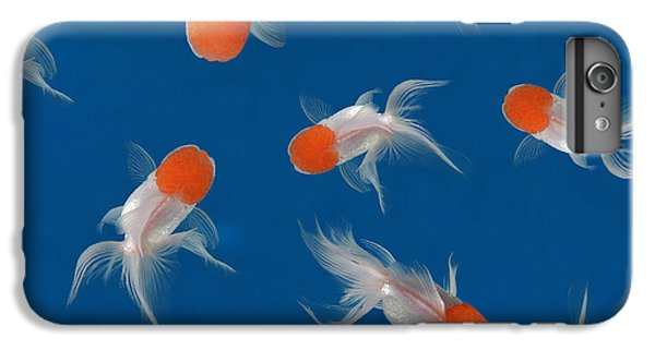 Lion Head iPhone 6 Plus Case - Goldfish Texture On Blue Background For by Bluehand