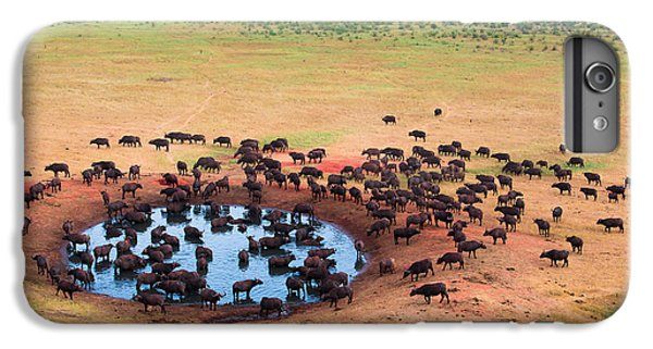 Africa iPhone 6 Plus Case - Herd Of Buffaloes In Water Hole by Andrzej Kubik