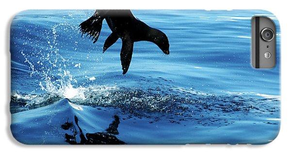 Lion iPhone 6 Plus Case - Juvenile Sea Lion In Rare Pose Mid Air by Mavrick