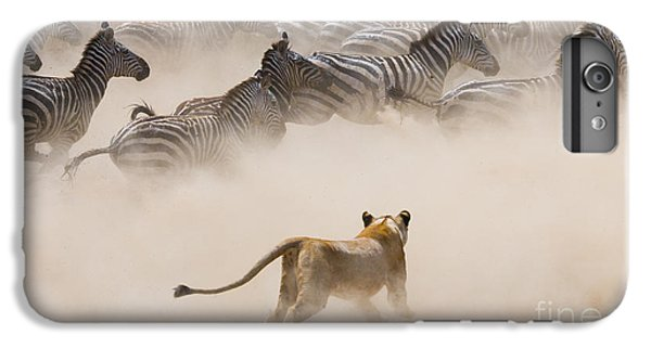 Lion iPhone 6 Plus Case - Lioness Attack On A Zebra. National by Gudkov Andrey