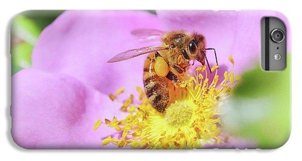 Honeybee iPhone 6 Plus Case - Sweet As Honey by Susan Capuano