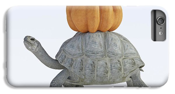 Tortoise iPhone 6 Plus Case - The Tortoise And The Pumpkin by Betsy Knapp