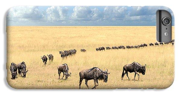 Africa iPhone 6 Plus Case - Wildebeest, National Park Of Kenya by Volodymyr Burdiak