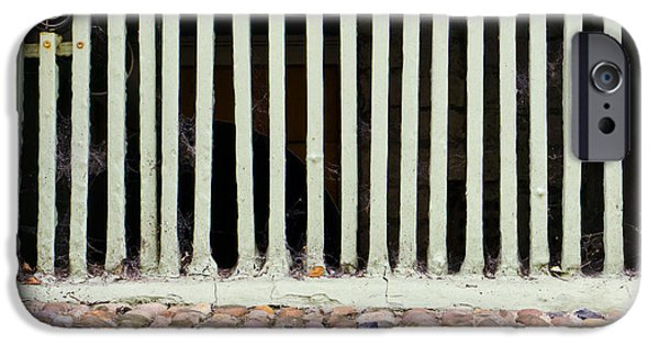 Dungeon iPhone 6s Case - Bars by Tom Gowanlock