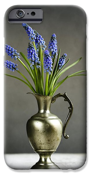 Hyacinth Still Life IPhone 6s Case by Nailia Schwarz