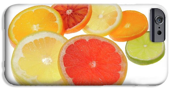 Slices Of Citrus Fruit IPhone 6s Case