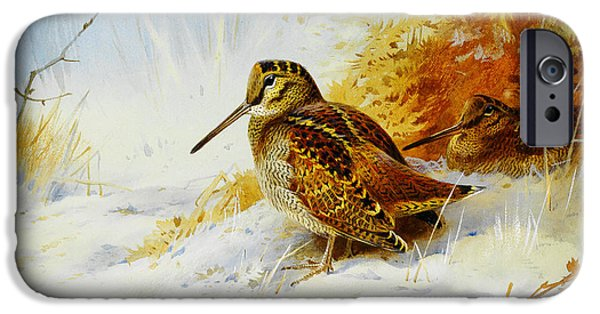 Winter Woodcock  IPhone 6s Case by Celestial Images