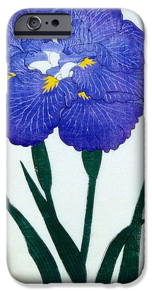 Japanese Flower IPhone 6s Case by Japanese School