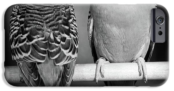1960s Pair Of Parakeets Perched IPhone 6s Case
