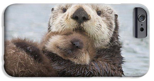 Otter iPhone 6s Case - Female Sea Otter Holding Newborn Pup by Milo Burcham