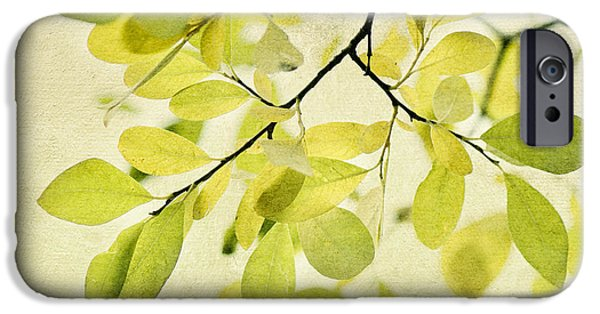 Contemporary iPhone 6s Case - Green Foliage Series by Priska Wettstein