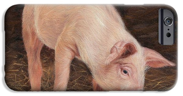 Pig IPhone 6s Case by David Stribbling