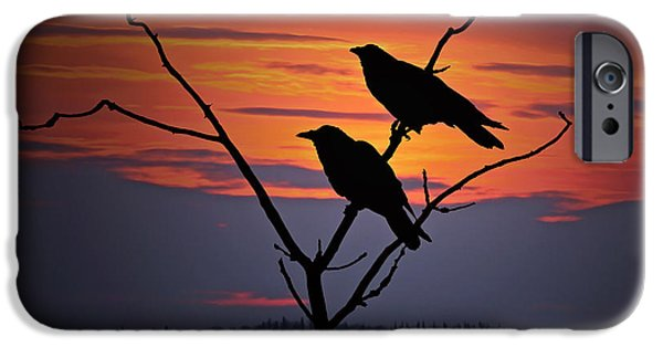 Crow iPhone 6s Case - 2 Ravens by Ron Day